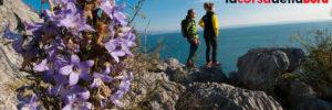 La-Corsa-Della-Bora_s1-trail-01-2